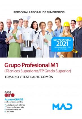 Personal Laboral Grupo Profesional M1 (Técnicos Superiores/FP Grado Superior)